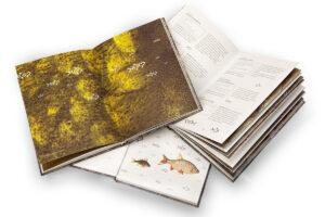 Biofisch Kochbuch offen