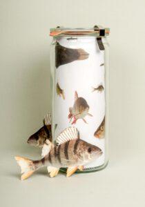biofisch directmail weckglas